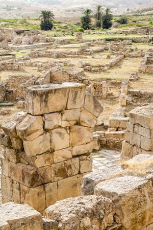 The Theater, Roman ruins of Bulla Regia, Tunisia by Nico Tondini