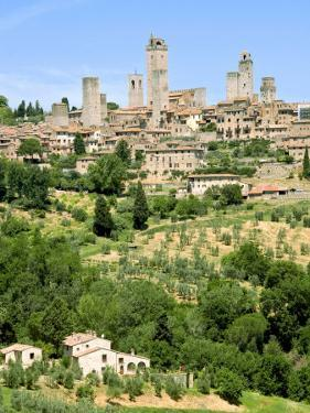 View to Town across Agricultural Landscape, San Gimignano, Tuscany by Nico Tondini