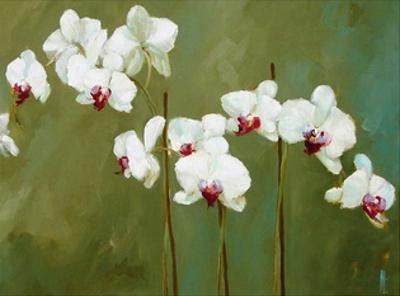 Orchid in Greens