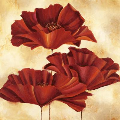 Three Poppies I