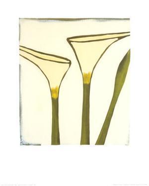 Arum, c.2003 by Nicolas Le Beuan Bénic