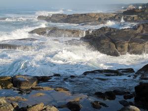 Waves Crashing on the Shoreline of Tillamook by Nicole Duplaix