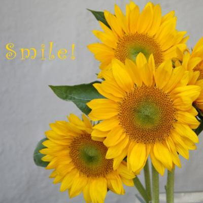 Smile: Sunflower Bouquet by Nicole Katano