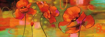 Magical Poppies