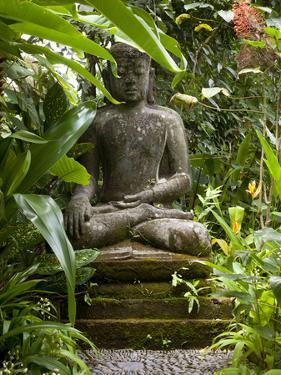 Bali, Ubud, a Statue of buddha Sits Serenely in Gardens by Niels Van Gijn