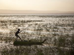 Ethiopia, Lake Awassa; a Young Boy Punts a Traditional Reed Tankwa Through the Reeds by Niels Van Gijn