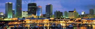 Miami Skyline and Marina at Dusk