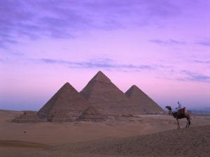 Camel Rider at Giza Pyramids, Giza, UNESCO World Heritage Site, Cairo, Egypt, North Africa, Africa by Nigel Francis