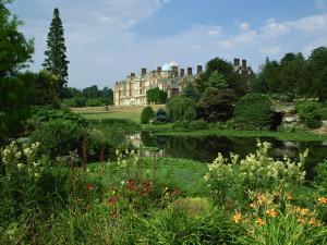 Sandringham, Norfolk, England, United Kingdom, Europe by Nigel Francis