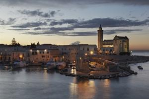 A Dusk View of the Fishing Harbor of Trani by Nigel Hicks