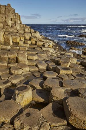 Giant's Causeway, UNESCO World Heritage Site, County Antrim, Ulster, Northern Ireland, United Kingd by Nigel Hicks