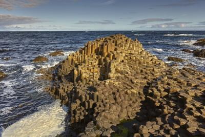Giant's Causeway, UNESCO World Heritage Site, County Antrim, Ulster, Northern Ireland, United Kingd by Nigel Hicks