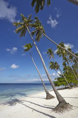 Paliton Beach, near San Juan, Siquijor, Philippines, Southeast Asia, Asia by Nigel Hicks