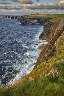 The cliffs at Loop Head, near Kilkee, County Clare, Munster, Republic of Ireland, Europe by Nigel Hicks