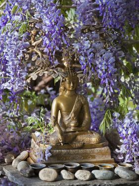 A Small Buddha Shrine Surrounded by Wisteria in Hotel Gangtey Palace, 100-Year-Old Building, Once a by Nigel Pavitt