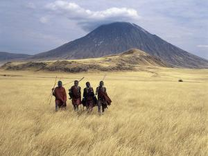 Maasai Warriors Stride across Golden Grass Plains at Foot of Ol Doinyo Lengai, 'Mountain of God' by Nigel Pavitt