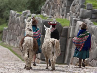 Peru, Native Indian Women Lead their Llamas Past the Ruins of Saqsaywaman