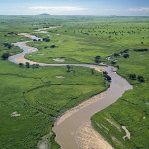 The Garamba River Winds Through the Grasslands of the Garamba National Park in Northern Congo by Nigel Pavitt