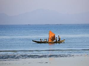 Tthe Crew of Small Fishing Boat Hurries Home to Sittwe Harbour with their Catch, Burma, Myanmar by Nigel Pavitt