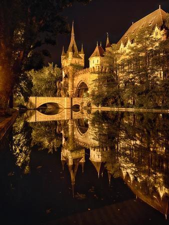 https://imgc.allpostersimages.com/img/posters/night-reflections-vajdahunyad-castle-budapest_u-L-Q1AUTVC0.jpg?artPerspective=n