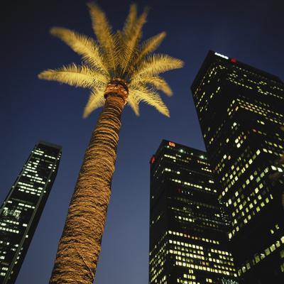 https://imgc.allpostersimages.com/img/posters/nighttime-in-downtown-los-angeles-california-usa_u-L-PN6NJ70.jpg?p=0