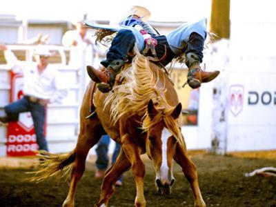 Chief Joseph Days Rodeo, Joseph, Wallowa County, Oregon, USA by Nik Wheeler