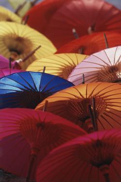 Colorful Paper Parasol, Close-Up by Nik Wheeler