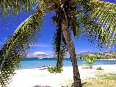 Qualie Beach, Nevis, Caribbean by Nik Wheeler