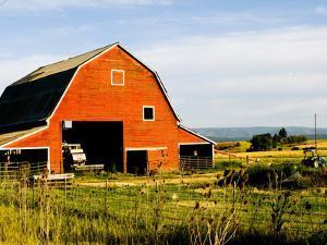 Red Barn in Field Near Joseph, Wallowa County, Oregon, USA by Nik Wheeler