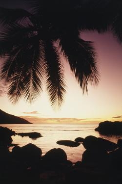 Seychelles, Mahe Island, Beau Vallon Bay, Sunrise by Nik Wheeler