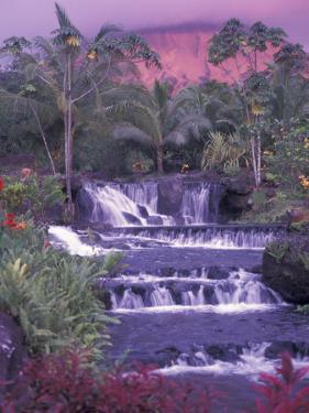 Tabacon Hot Springs, Arenal Volcano, Costa Rica by Nik Wheeler