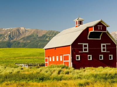 Wallowa Mountains and White Barn in Field Near Joseph, Wallowa County, Oregon, USA by Nik Wheeler