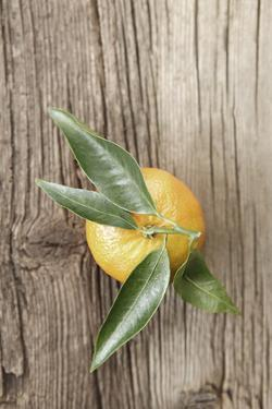 Clementine with Leaves on Wood by Nikky