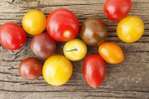 Tomatoes, Wooden Underground by Nikky