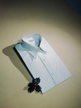 Best Selling Christmas Gifts - Pressed Shirt by Nina Leen