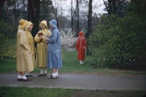 College Women During a Rain Storm at Michigan State University, Lansing Michigan 1954 by Nina Leen