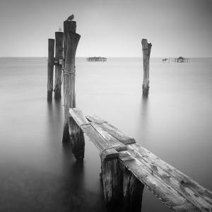 Venice Path by Nina Papiorek