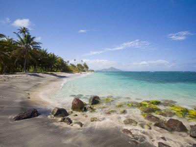 https://imgc.allpostersimages.com/img/posters/nisbett-plantation-beach-nevis-caribbean_u-L-P245GP0.jpg?p=0