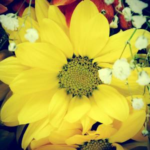 Closeup Of A Flower Bouquet, With A Retro Effect by nito