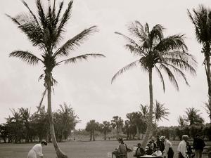 No. 1 Tee, Golf Links, Palm Beach, Fla.
