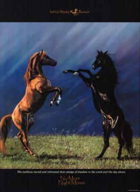 No More Night Mares Horses on Prarie Art Print Poster