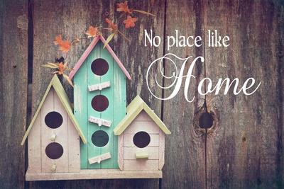 https://imgc.allpostersimages.com/img/posters/no-place-like-home-bird-houses_u-L-F92LSY0.jpg?artPerspective=n