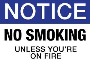 No Smoking Unless You're On Fire Notice Plastic Sign