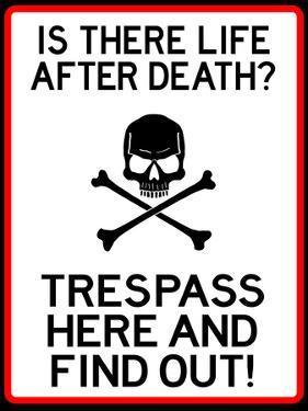 No Trespassing Do Not Enter Sign Poster