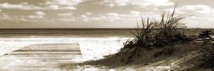 Boardwalk Shadows by Noah Bay