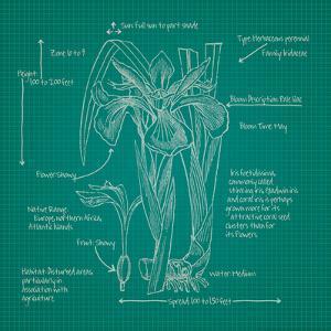 Blueprints 4 by Nobleworks Inc.