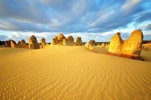 Pinnacles Desert by Nora Carol Photography