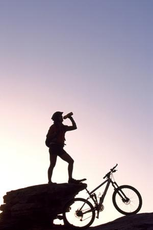 Mountain Biker, Grindelwald, Bernese Oberland, Switzerland (Mr) by Norbert Eisele-Hein