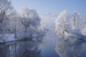 coldest morning by Norbert Maier