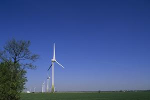 A Row of Windmills in a Field by Norbert Rosing